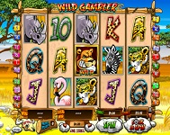 Various Online Slots at Winner Casino